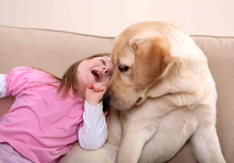 autistic girl playing with yellow dog