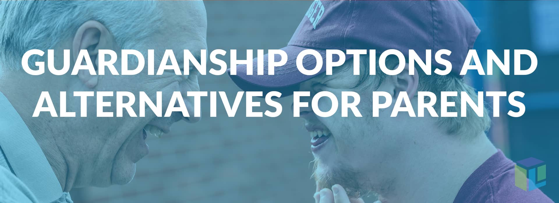 Guardianship Options And Alternatives For Parents
